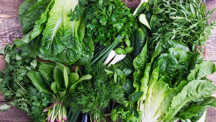 Mantención de verduras de hojas verdes (lechuga, espinacas, kale)